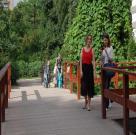 Twinson. г. Москва. Ботанический сад МГУ 17